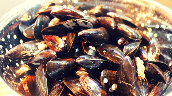 French provincial vegetables and mussels recipe - a cheap and delicious way to enjoy market fresh food. And a great way to spoil all of your travel bodies while sticking to the budget!