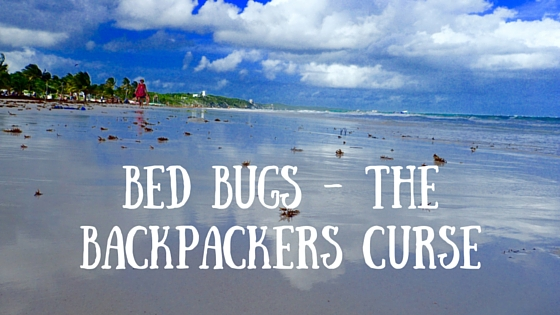 What to do when you are covered in Bed Bugs on holiday at www.thelitebackpacker.com