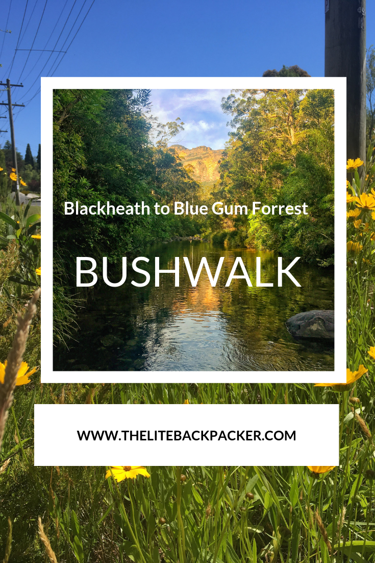 Blackheath to Blue Gum Loop Bushwalk – A Sydney Escape
