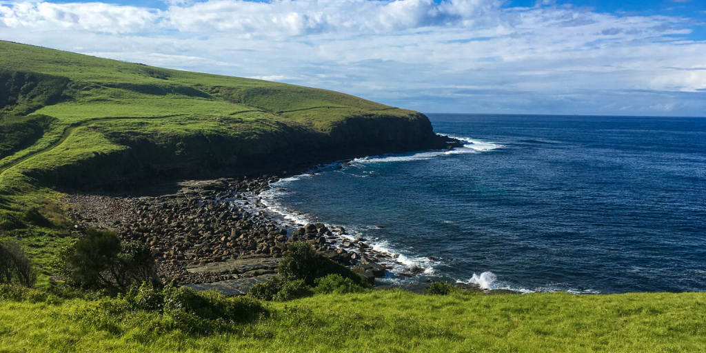 Whale Watching While Hiking from Kiama to Gerringong