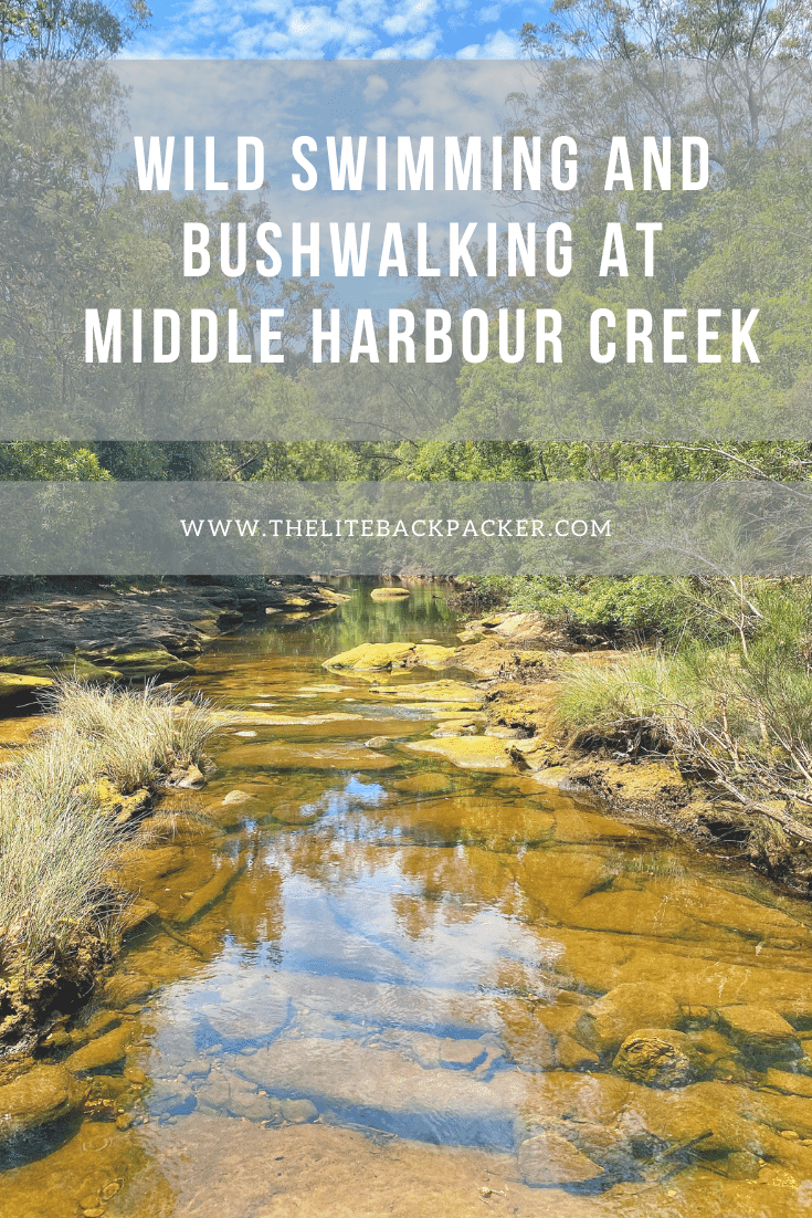 Wild Swimming and Bushwalking at Middle Harbour Creek